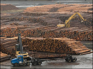 lumber-mill