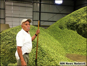 nwnn-farmworker-hops