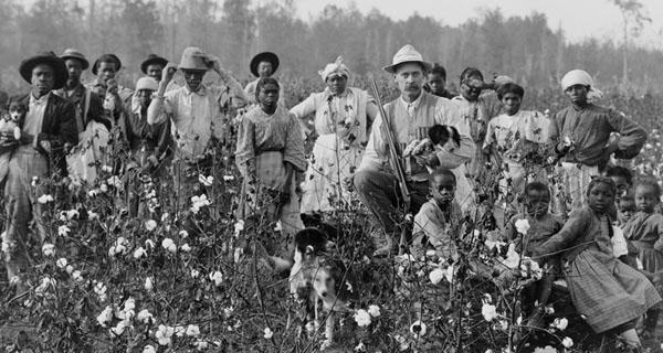 slavery-plantation