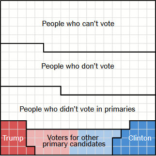 NYT-who-voted-16-primaries